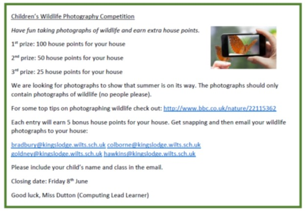 wildlife-photography-competition